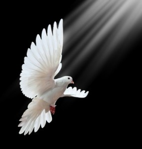 On Pentecost the Spirit came as fire. When Jesus was baptized He came like a dove.