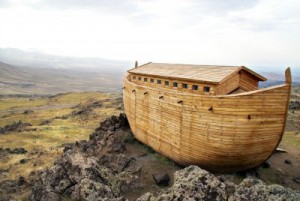 According to the dimensions given in the Bible and translating cubits into feet, the ark could well have been over 500 feet long, almost 92 feet wide and 55 feet tall.