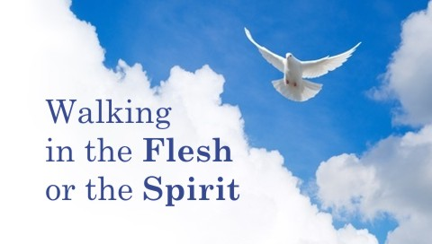 5 Differences Between Walking in the Flesh and Walking in