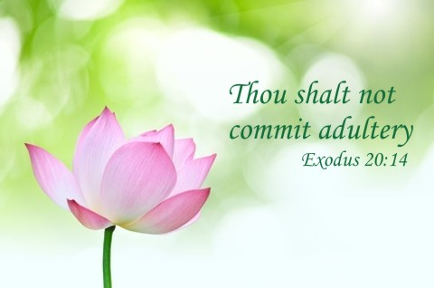 You Shall Not Commit Adultery 1