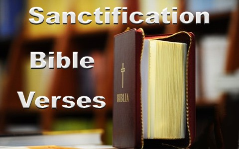 Top 10 Bible Verses About Sanctification