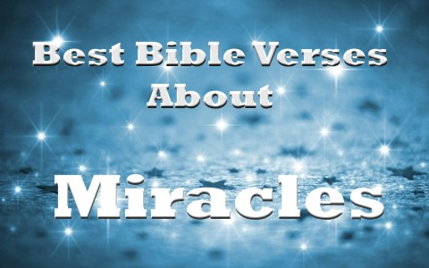 7 Of The Best Bible Verses About Miracles