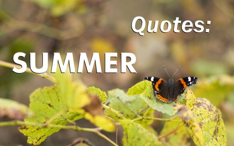 22 Christian Quotes For The Summer