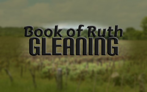 What Does Gleaning Mean In The Book Of Ruth