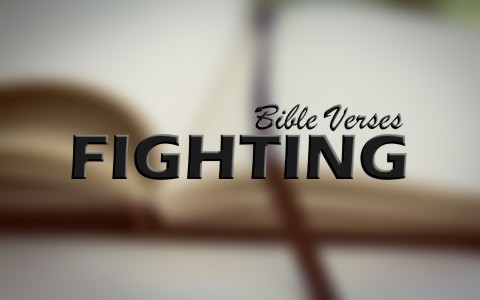Top 8 Bible Verses About Fighting