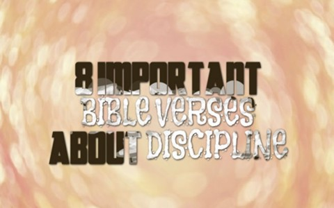 8 important bible verses about discipline