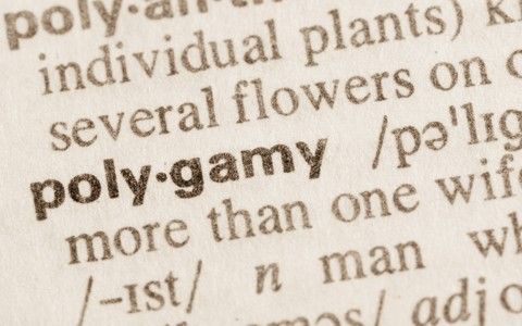 Polygamy is the state of being married to more than one partner, regardless of whether it's a man having many wives or a wife having many husbands.