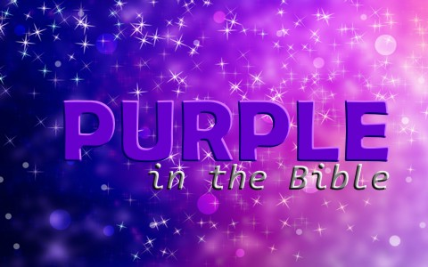 Does The Color Purple Represent Anything When Used In The Bible?