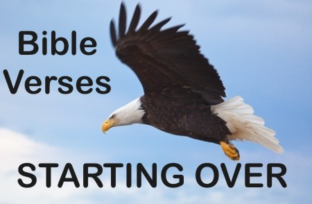 Top 7 Bible Verses About Starting Over