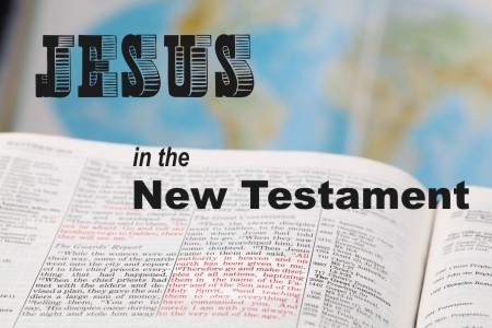 How Was Jesus Described in the New Testamen