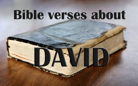 Top 7 Bible Verses About David