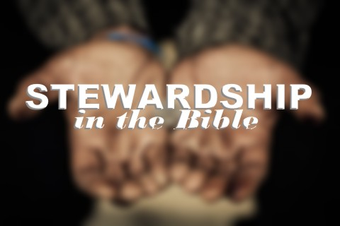 What Does the Bible Teach About Stewardship