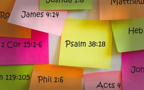 25 Great KJV Bible Verses to Memorize