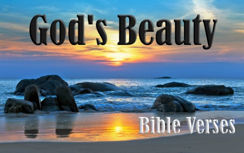 Top 7 Bible Verses About God's Beauty