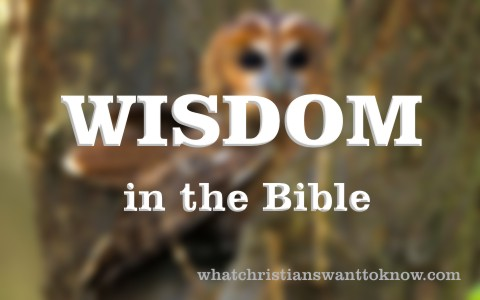 Where Does Wisdom Come From