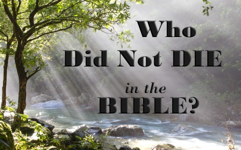 Who did not die in the Bible
