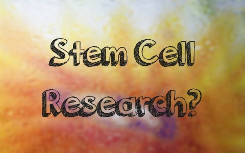 how-do-christians-view-stem-cell-research