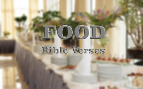 6 Important Bible Verses About Food