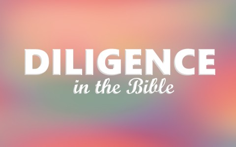 What Does the Bible Say about Diligence?
